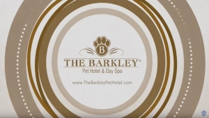 ABC The List names The Barkley Pet Hotel & Day Spa to its top dog hotels